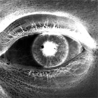 photo of a photographer's eye