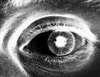 Buck Art (eye of a photographer, photographed by Orin Buck)